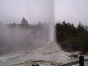 Hot geysers in Rotorua