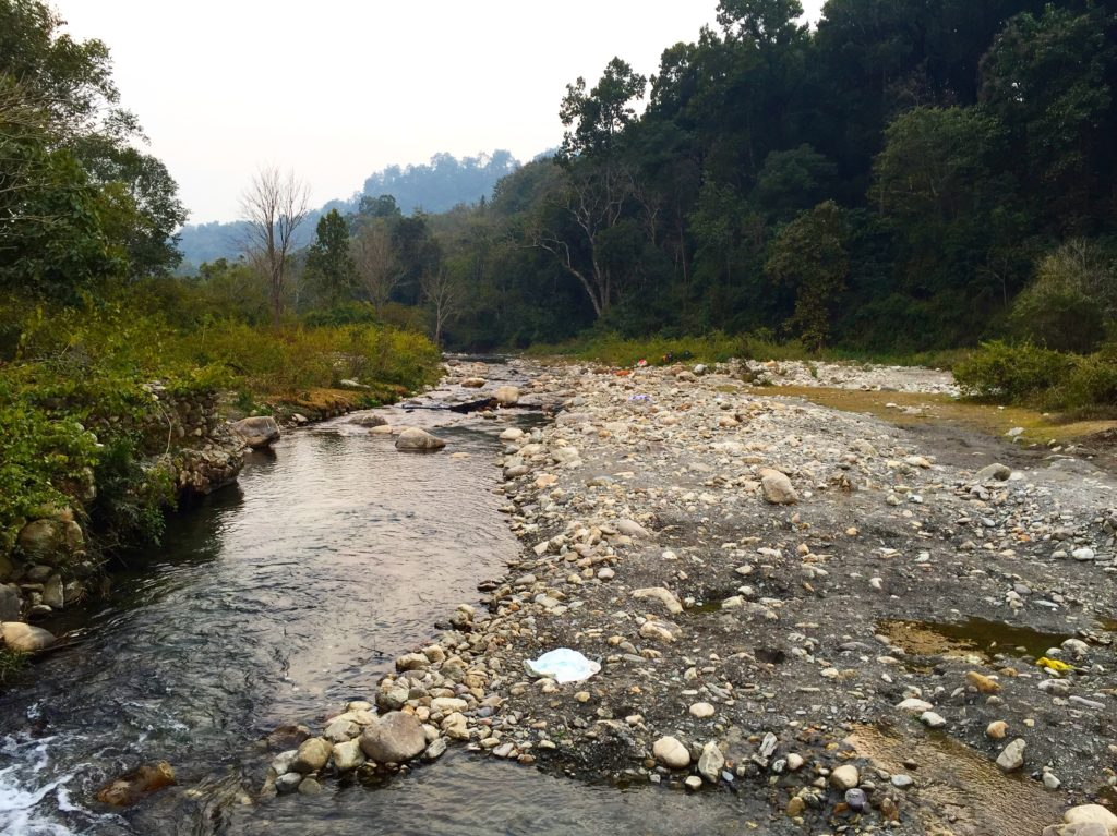 Stream running through Corbett National Park
