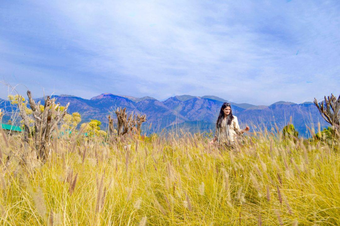 Landscape of Corbett National Park