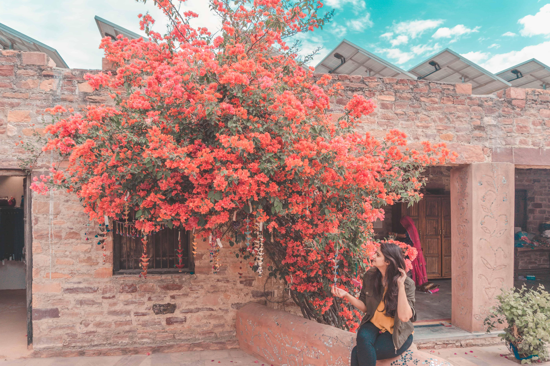 Chandelao Jodhpur Heritage Hotel Rajasthan